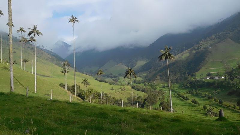 Cocora Valley mit Sonne am schönsten