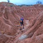 Mars Wanderer
