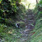 und Treppen