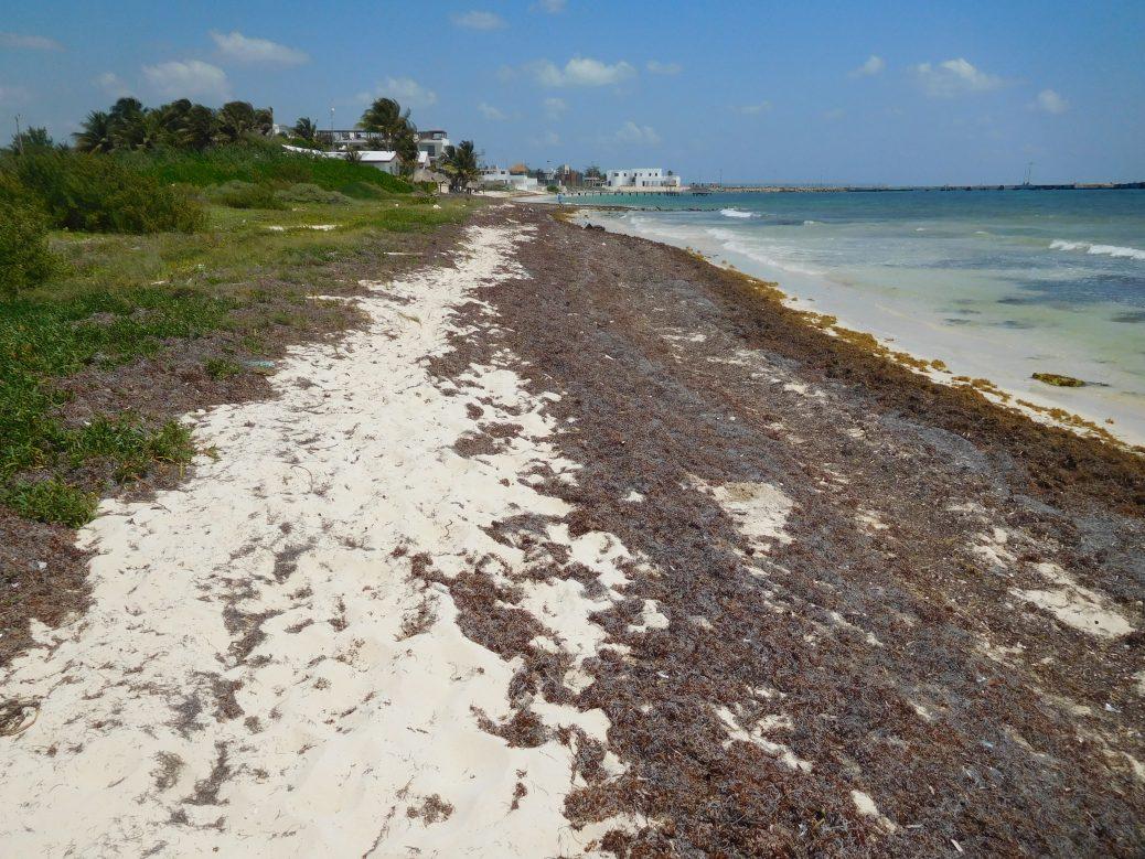 Strand in Puerto Morelos