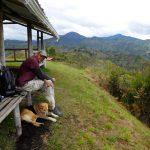 Pause mit Hund