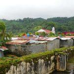 Alles bewachsen und schimmelig in Portobelo