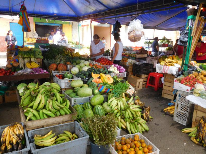 Erdbeeren, Bohnen, Melonen, Brokkoli, der Markt gibt alles her