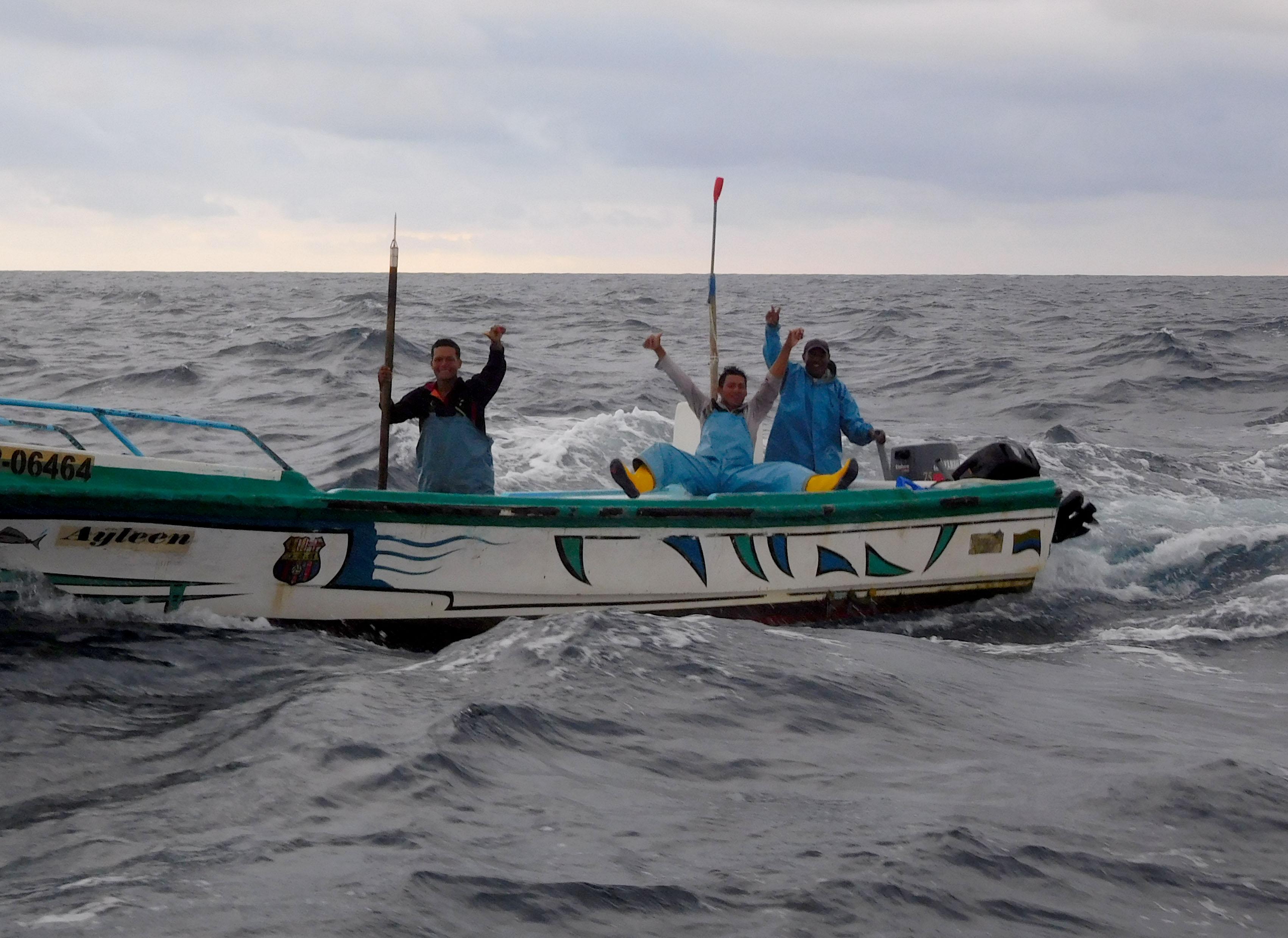 Fischer kommen morgens zum 'hallo' sagen vorbei