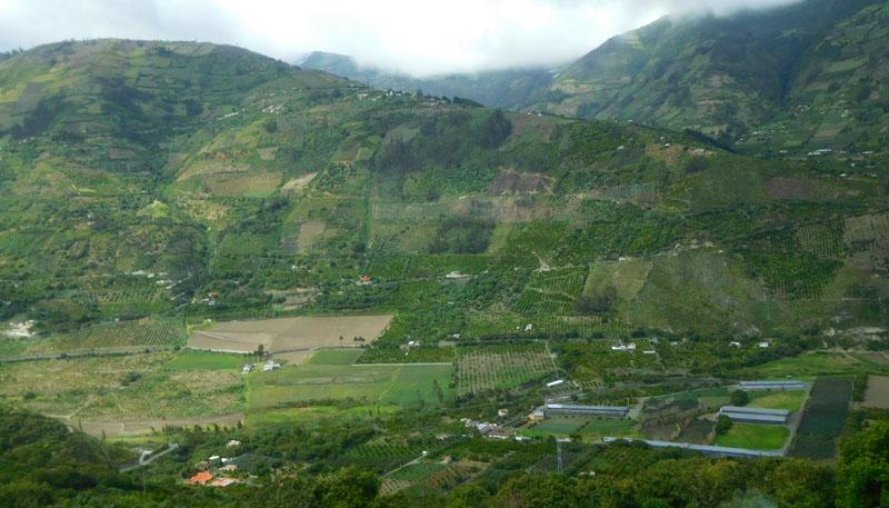 Die Avenida de los Volcanes besteht nur aus Landwirtschaft
