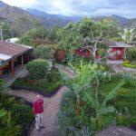 Der chillige Garten vom Hostal Rendez-Vous