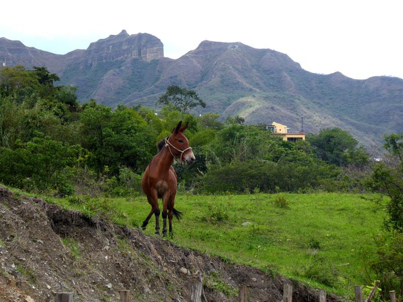 Dramatische Berge umrunden Vilcabamba