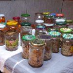 50 Gläser Eingekochtes - Fleisch, Speck, Bohnen und Möhren