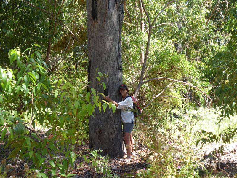 Eine Baum-Flüsterin