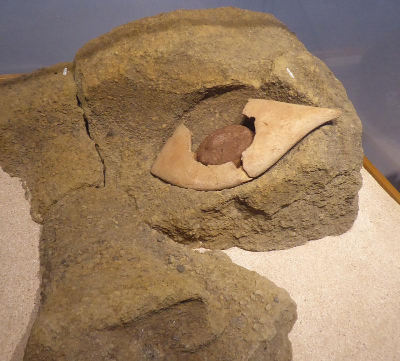Einziges Original-Auge was man gefunden hat