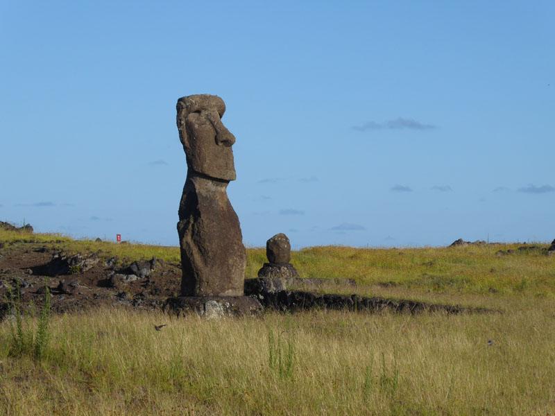 Moai der älteren Generation - noch mit breiter Nase und relativ klein
