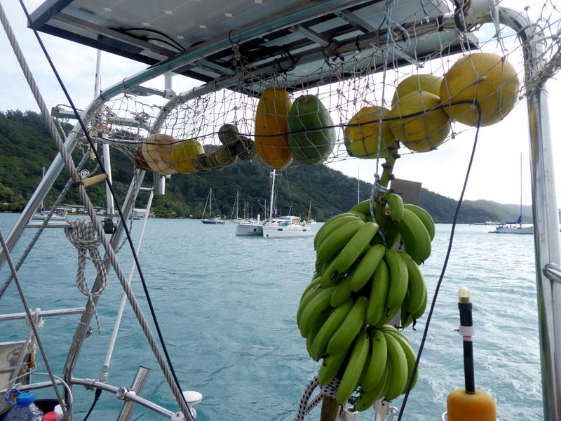 Gut gerüstet geht es in die Obst freien Tuamotus Papaya Pampelmusen Orangen Kürbis Kokosnuss
